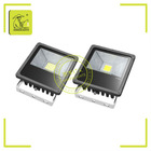 Most powerful cob led flood light 30W IP65 for garden landscape 85-265V