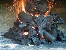 Vegetal Coal