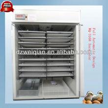 automatic solar chicken incubator/ostrich,reptile,emu incubator(3168 eggs)