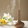 2013 soins de beauté huile de noix de coco vapeur facial