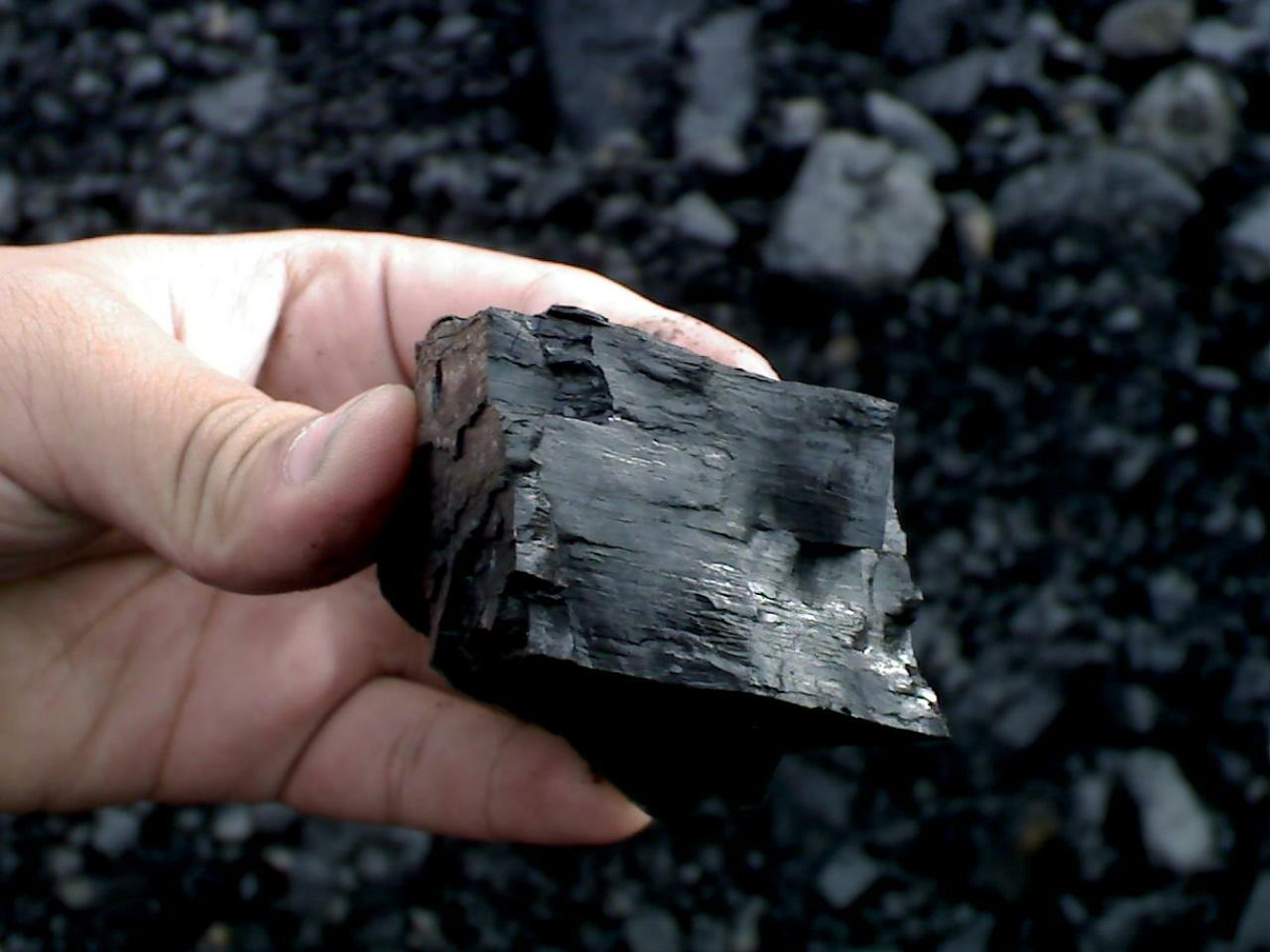 Каменный уголь для поделок