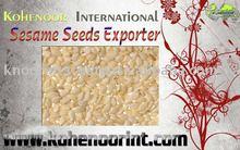 New Crop SESAME SEEDS Pakistan Origin-Exporter Kohinoor International