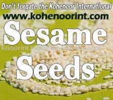 SESAME SEEDS Exporter KOHINOOR INTERNATIONAL