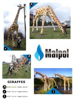Fiberglass Life-Size giraffes Statues