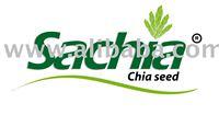 Organic and Natural Chia Seeds