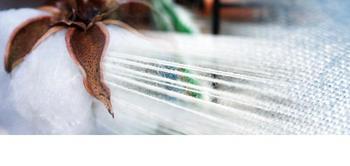 Textile Agent