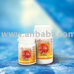 GANODERMA LUCIDUM / Health Food