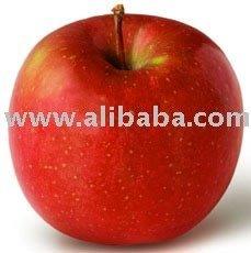 Fuji Apple from Korea