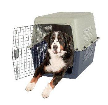 Sell Flight / Dog Carrier