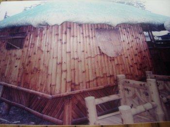 Bamboo Nipa House