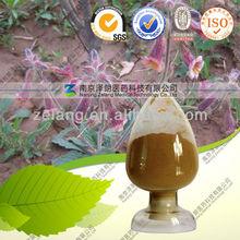 Natural Radix Rehmanniae Preparata Medicine and Health Products