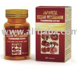 NAM LINH CHI NHAT BAN- JAPANESE REISHI MUSHROOM