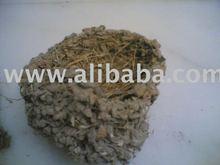 black swallow bird nest