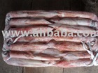 Export Quality Frozen Squid