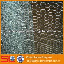 Hot sale!Hexagonal wire netting,galvanized mesh fencing(manufacturer)