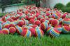 various colors rainbow stripe practice training foam golf balls