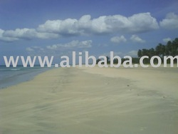 Beach Side Land in Sri Lanka
