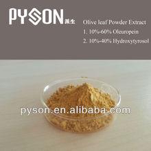100% Natural 10%-60% 10%-40% Hydroxytyrosol Oleuropein Olive Leaf Extract