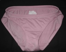 Hanes Ladies Panty Cheap