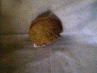 Grass Sponge