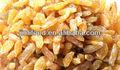 Delicioso delicioso buen precio xinjiang pasas