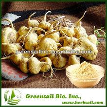 Organic Raw Materials Maca Extract
