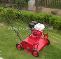 Scarificateur à gazon/pelouse, dethatcher/raker de puissance