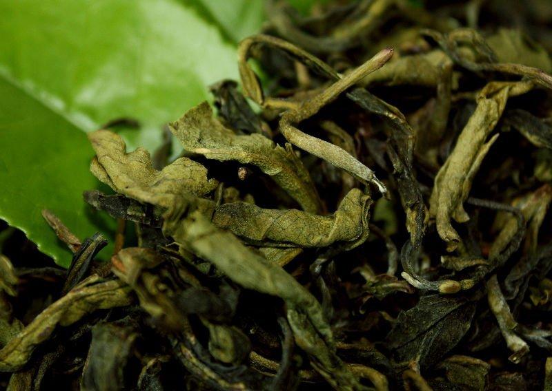 الشاي البري