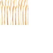หน่อไม้ฝรั่งสีขาวi qf