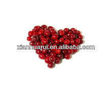 cranberry P.E. anthocyanidins 25% proanthocyanidins 25% fruit cranberry extract