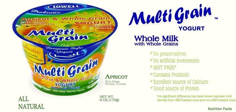 Multi Grain Yogurt