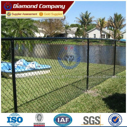 green PVC coated chain link fence / black coated chain link fence (factory)