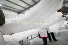100% plain cotton cover silk quilt