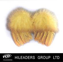Party Supplier Feather Wings DS808