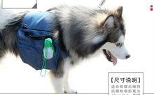 mutifunctional travel pet backpack Luxury