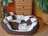 Luxus Dog bed