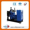10kw a 1000kw weifang hualing carbón de gas generador de energía eléctrica de la fabricación