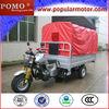 Lifan 250CC Water Cool Petrol Cheap Triciclos Para Discapacitados
