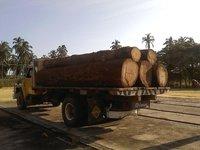 Red Oak and White Oak Logs
