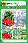 "hat giong dua hau ""Queen"" Green Bull Seed"