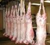 Halal Fresh/Frozen Sheep/Goat/Lamb Meat/Carcass