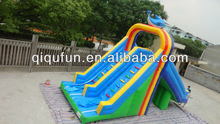 Inflatable Dolphin Water Slide for Swimming Pool