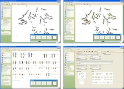 Karyotyping Software
