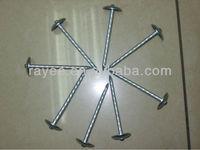 Aluminum Roofing Nails