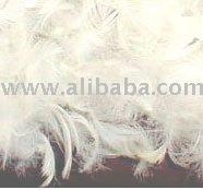 Fethar Pillow