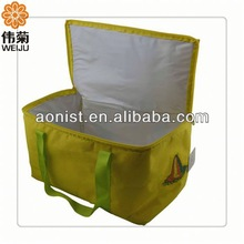 Reusable Cooler Bag,Great for Kids,With High quality