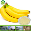 Hot Selling Organic Banana Extract