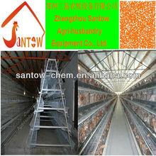 Cool galvanized design layer chicken cages