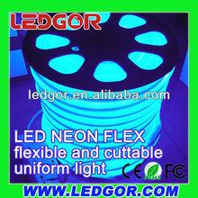 Diffused 2 core Blue LED Neon Flex (building neon decoration)