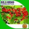 Xinjiang Goji Berry Wolfberry/Lycium Barbarum